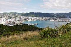 Baie et ville de Wellington Photo libre de droits
