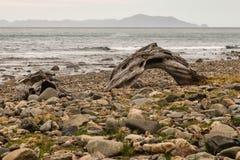 Baie pierreuse en péninsule de Coromandel Photo stock