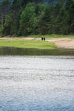 Baie-Saint-Paul charlevoix quebec. Couple walking on the beach in Baie-Saint-Paul charlevoix Royalty Free Stock Photos