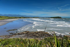 Baie scénique de Tauranga de colonie de joint au Nouvelle-Zélande Photo stock