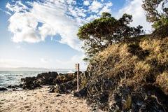 Baie solitaire sur la péninsule de Coromandel, Nouvelle-Zélande Images stock