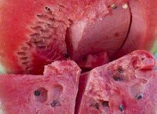 Baie un rouge mûr de pastèque avec les graines noires Photographie stock