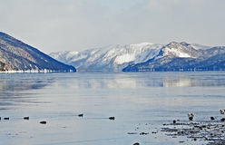 Baie Verte Newfoundland Stock Foto's