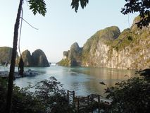 Baie Vietnam - quelques bateaux, premier plan de Halong d'arbre photos stock