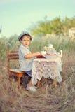 Baies Photo stock