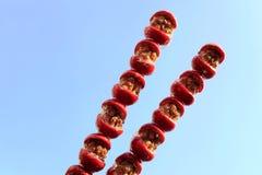 Baies d'aubépine Sugarcoated sur un bâton image stock