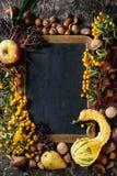 Baies d'automne avec le tableau Photos stock