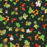 Baies d'automne de vintage de vecteur Nuts sur vert-foncé Photographie stock libre de droits