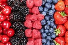 Baies dans une rangée avec des fraises, des myrtilles et le cherrie Image stock