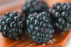 Baies de Blackberry macro Image stock