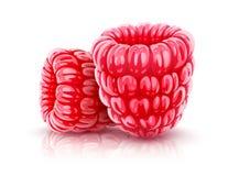 baies de framboise Fruits réalistes rouges mûrs illustration stock