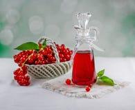 Baies de groseille rouge Photographie stock