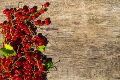 Baies de groseille rouge sur le fond en bois rustique Photos libres de droits