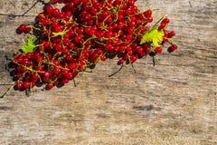 Baies de groseille rouge sur le fond en bois rustique Photographie stock libre de droits