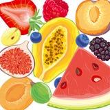 Baies de mélange et fruits tropicaux illustration stock
