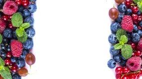 Baies de mélange sur un fond blanc Baies et fruits avec l'espace de copie pour le texte nourriture Noir-bleue et rouge Myrtilles  Photos libres de droits