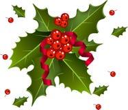 Baies de Noël avec le ruban rouge Images stock