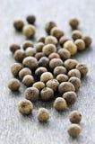 Baies de poivre de Jamaïque Image stock
