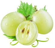 Baies de raisin blanc avec la feuille verte photo stock