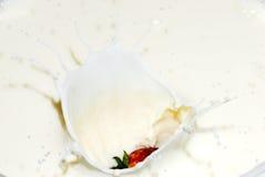 Baies et crème Photographie stock