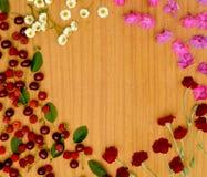 Baies et fleurs sur la table, cadre pour le texte Image stock