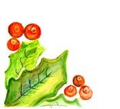 Baies mûres de viburnum avec des feuilles Illustration Libre de Droits