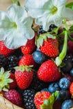 Baies multicolores d'été, myrtilles, fraises, framboises et mûres, dans le plat en osier image libre de droits