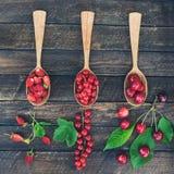 Baies organiques fraîches dans des cuillères en bois Cerise, groseille rouge et fraisiers communs Vue supérieure photo stock