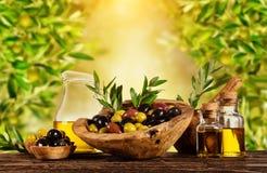 Baies récemment récoltées d'olives en cuvettes en bois et pétrole pressé Images stock