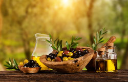 Baies récemment récoltées d'olives en cuvettes en bois et pétrole pressé i Photo stock