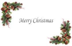 Baies rouges de cônes de pin d'étiquette de fond de Noël et embarqué par la guirlande de fête Photos libres de droits