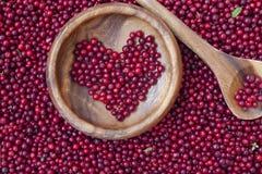 Baies rouges de myrtille sous forme de coeur Photographie stock
