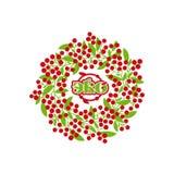 Baies rouges sur des brindilles avec des feuilles en cercle illustration de vecteur