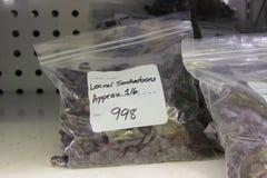 Baies surgelées de Saskatoon en paquet dans le supermarché Images libres de droits