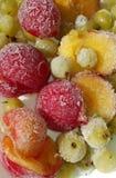 Baies surgelées - prunes et groseille à maquereau Photo libre de droits