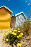 Baignant des cadres sur la plage de Brighton - Melbourne - once photos libres de droits