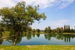 Baigner l'étang Photographie stock