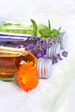Baigner l'huile, calendula, lavande, mélisse Image stock