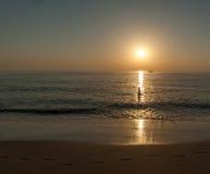 Baignez dans la lumière du soleil Photo stock