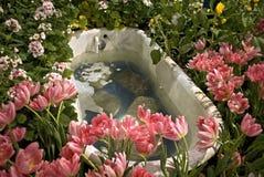 Baignoire, exposition de fleur de Philadelphie image libre de droits