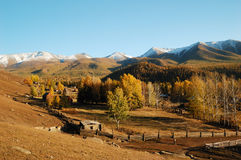 Baihaba Village. Baihaba is the most north-western village of China, bordering Kazakhstan Stock Photography