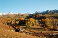 Baihaba Village. Baihaba is the most north-western village of China, bordering Kazakhstan. Northern Xinjiang, China, October, 2007 Stock Photography