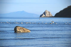 baikal λίμνη Στοκ φωτογραφία με δικαίωμα ελεύθερης χρήσης