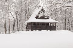 baikal κούτσουρο λιμνών ακτών καμπινών Στοκ εικόνα με δικαίωμα ελεύθερης χρήσης