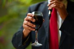 Baikal συγχαρητηρίων κόκκινο κρασί Στοκ Εικόνα