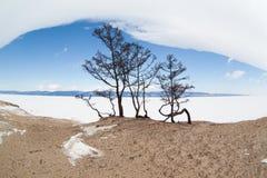 baikal χειμώνας στοκ εικόνες