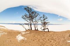 baikal χειμώνας Στοκ Φωτογραφίες