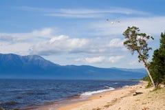 Baikal, baai Barguzin Royalty-vrije Stock Afbeelding