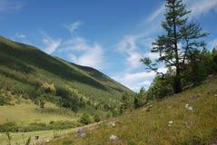 Baikal-Berglandschaft lizenzfreie stockbilder