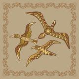 Baikal gull illustration in doodle style. Vector monochrome sket Royalty Free Stock Image